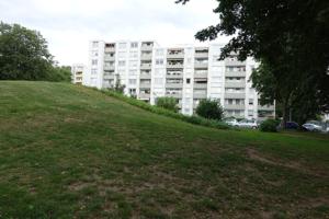 Bild von Grünfläche mit Hochhaus im Hintergrund